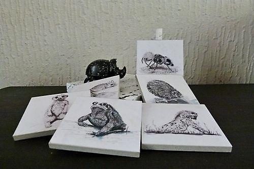 Coasters Animals