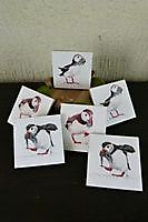 Coasters Puffins